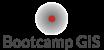 bgis-logo-blk-cropnotag